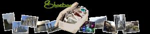 Shoebox Header
